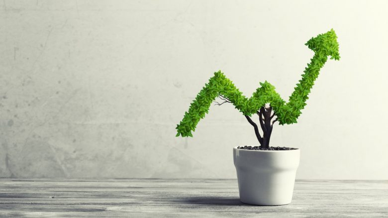 Growth / Valuation Metrics